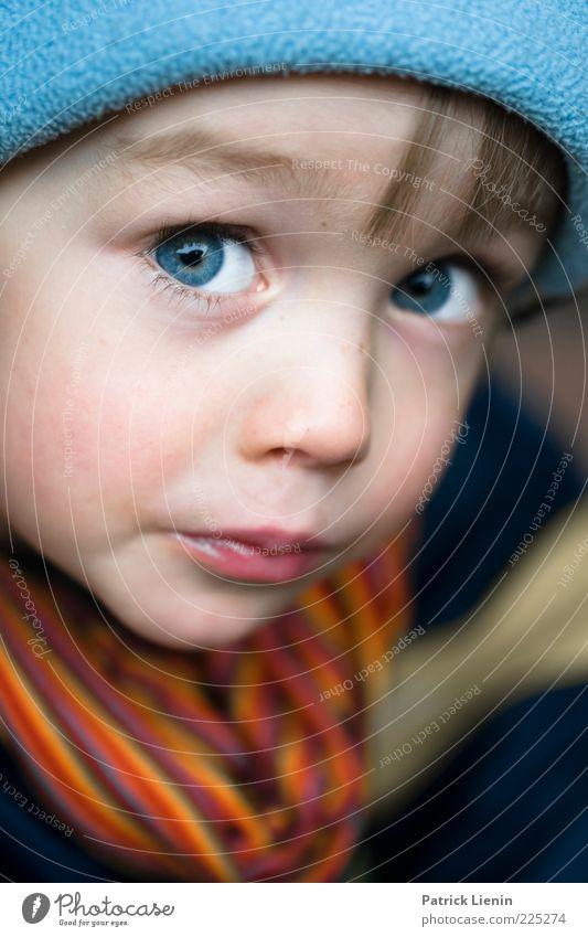 Kleiner Fratz Mensch Kind blau schön Gesicht Auge Junge Gefühle Haare & Frisuren Stimmung Kindheit maskulin Lifestyle Coolness Neugier beobachten