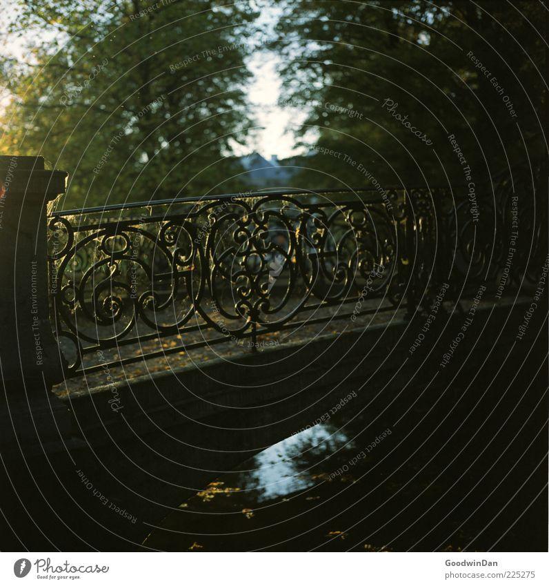 Analoge Brückenmagie Natur alt schön Wasser Baum Ferne dunkel kalt Umwelt Wege & Pfade Stimmung Park frisch Brücke Fluss viele