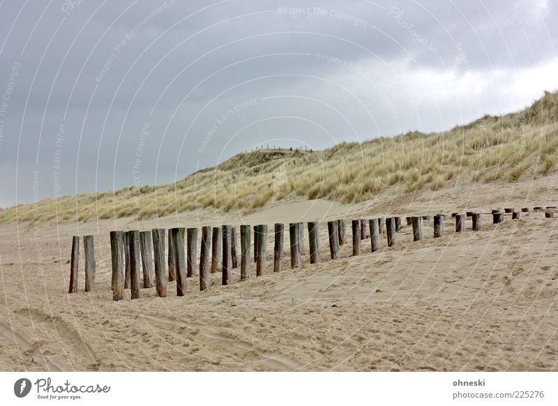 Winterstrand Landschaft Wolken schlechtes Wetter Regen Pflanze Dünengras Küste Strand Nordsee Stranddüne Buhne Sand Holz Erholung ruhig Gedeckte Farben