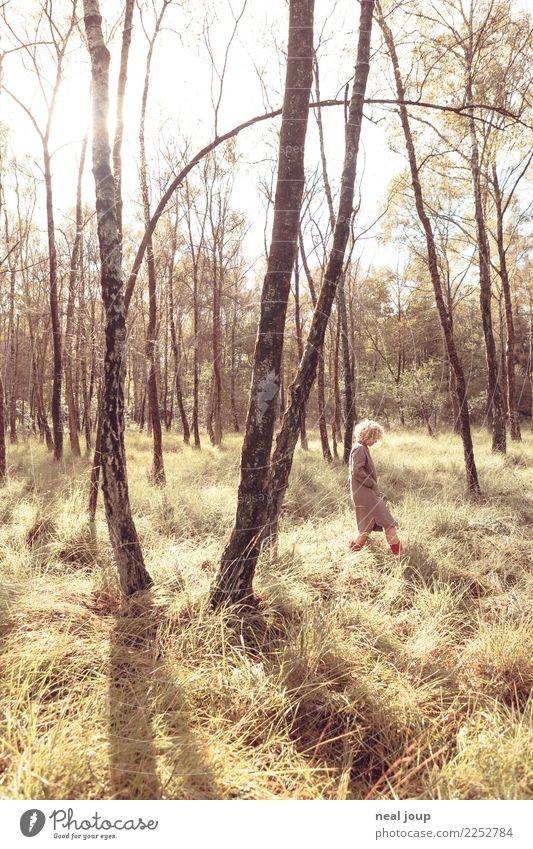 Rotstiefelchen Frau Mensch Jugendliche rot Erholung Einsamkeit Wald 18-30 Jahre Erwachsene feminin Zufriedenheit träumen elegant blond einzigartig niedlich