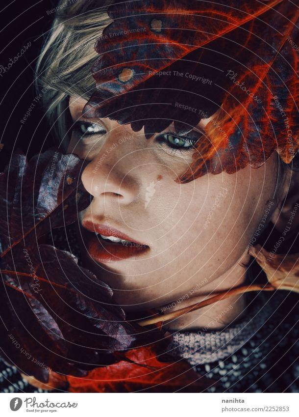 Künstlerisches Portrait einer jungen Frau mit Herbstblättern Design exotisch schön Haut Gesicht Lippenstift Sinnesorgane ruhig Mensch feminin Junge Frau
