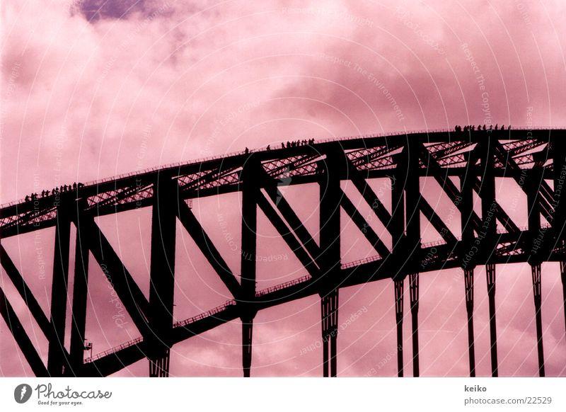 keiko Sydney Australien Brücke Mensch Brückenaufstieg