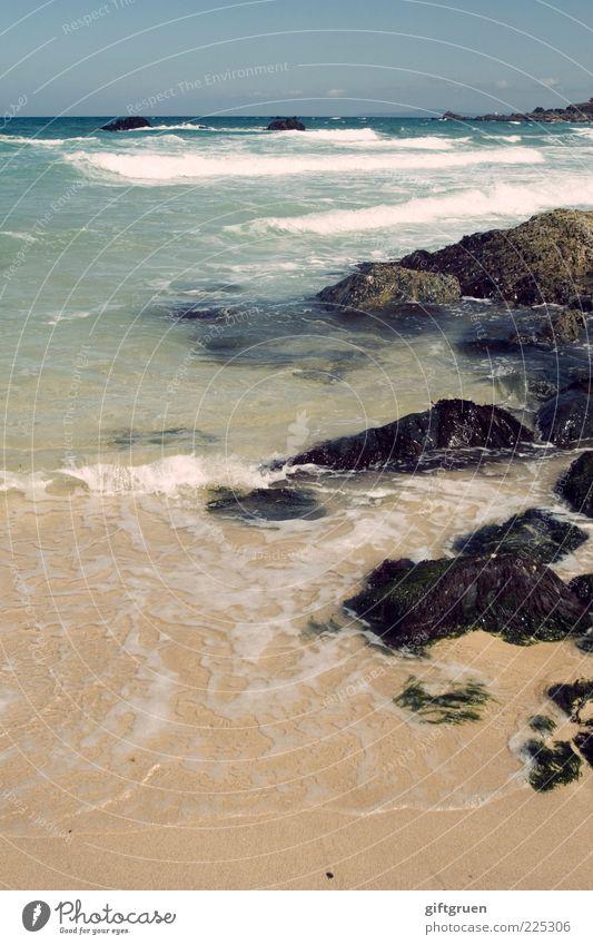 infinite iteration Umwelt Natur Landschaft Urelemente Sand Wasser Himmel Horizont Sommer Schönes Wetter Wellen Küste Strand Meer Wandel & Veränderung Algen