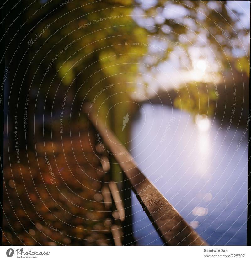 focus. II Natur Wasser schön Umwelt Stimmung ästhetisch Fluss Urelemente einfach Geländer herbstlich
