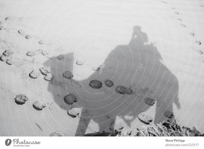 Dromedar Trip Mensch Natur Sommer Ferien & Urlaub & Reisen Tier Umwelt Sand Ausflug Abenteuer Tourismus Urelemente Wüste Spuren exotisch Safari