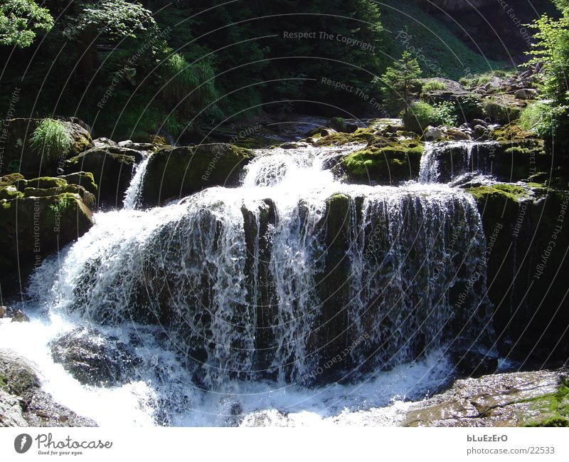 Bergbach Natur Wasser Berge u. Gebirge Kraft Bach Wasserfall