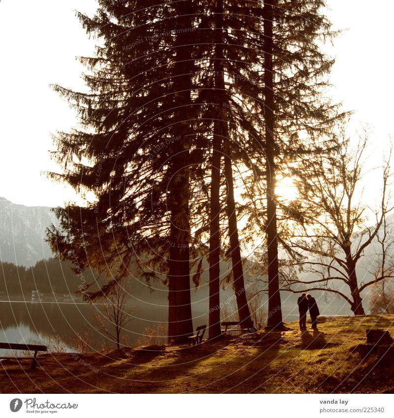 Abendstimmung Mensch Natur Baum Sommer Wald Wiese Herbst Berge u. Gebirge Landschaft Wärme Paar See Zusammensein Felsen Bank Romantik