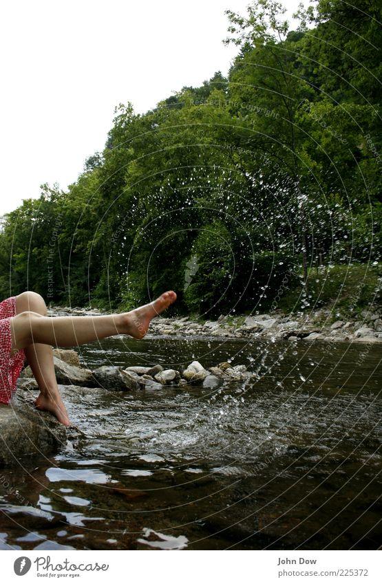 locker spritzig Ausflug Junge Frau Jugendliche Beine Fuß 1 Mensch Frühling Sommer Baum Sträucher Felsen Flussufer Rock Bewegung frech Fröhlichkeit frisch Freude