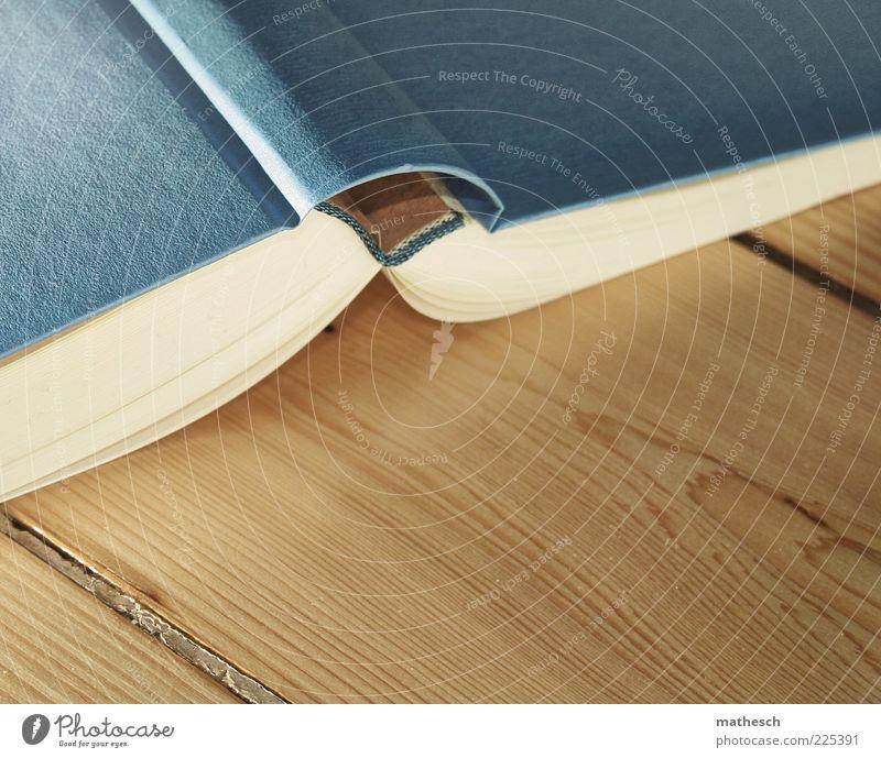 leseblockade Holz Freizeit & Hobby Buch liegen Bildung Medien Printmedien Parkett abgelegen Dinge Bucheinband entgegengesetzt aufgeklappt Dielenboden
