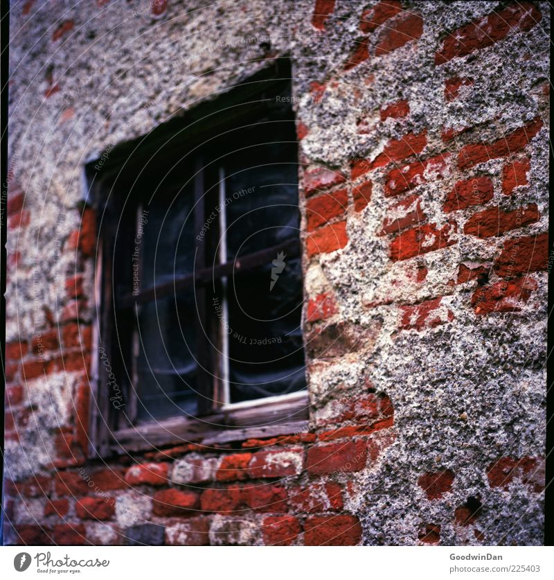verlassen. alt Haus Wand Fenster Mauer Gebäude Fassade kaputt authentisch Wandel & Veränderung Backstein Verfall eckig Folie Holzfenster