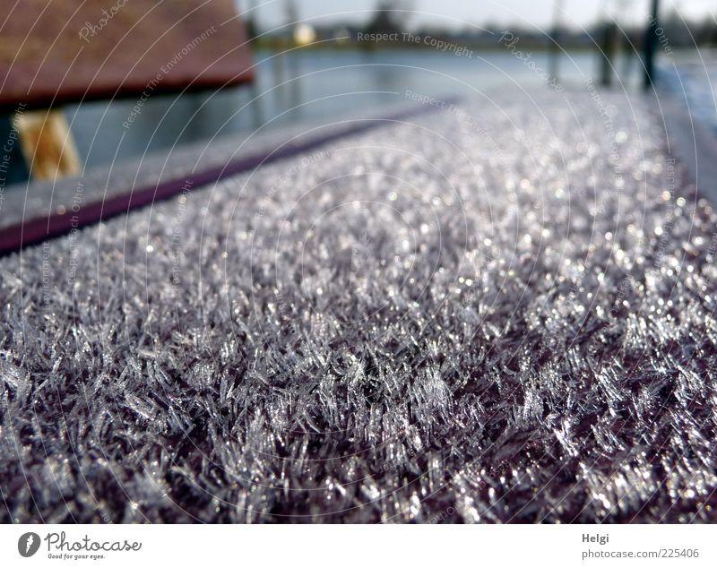 """Winter""""pelz""""... weiß schön blau ruhig Winter Einsamkeit kalt Umwelt grau braun Eis glänzend ästhetisch natürlich Frost Bank"""