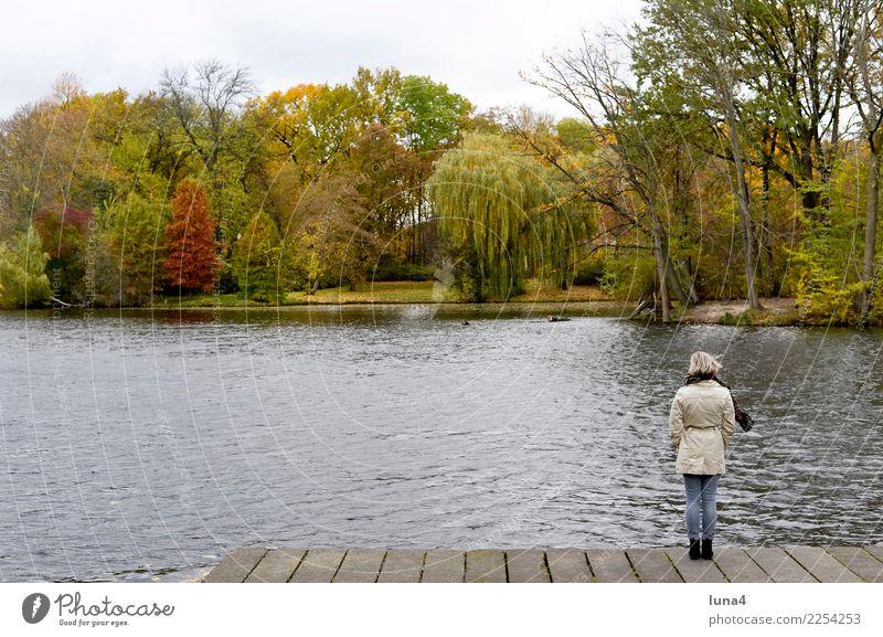 Tristesse Meditation Junge Frau Jugendliche Erwachsene 1 Mensch 18-30 Jahre Natur Herbst Park See Mantel träumen Traurigkeit warten Sorge Trauer Liebeskummer