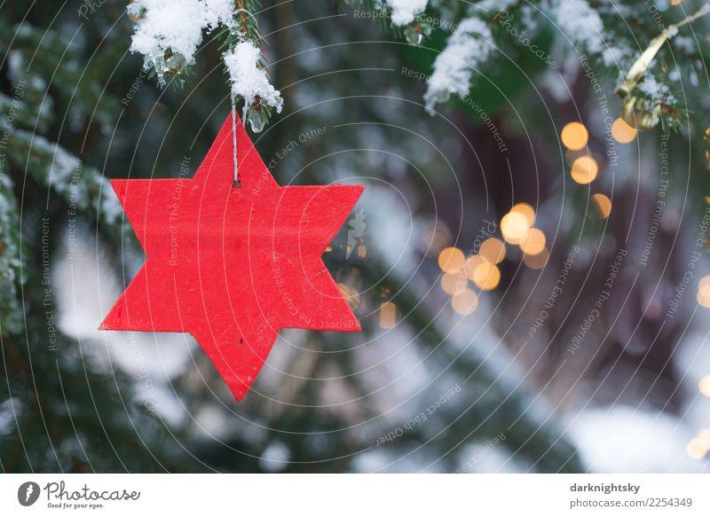 Roter Stern und Weihnachtsbaum Weihnachten & Advent grün Baum rot Winter Wald gelb Gefühle Schnee Holz Freizeit & Hobby Schneefall retro Wetter glänzend