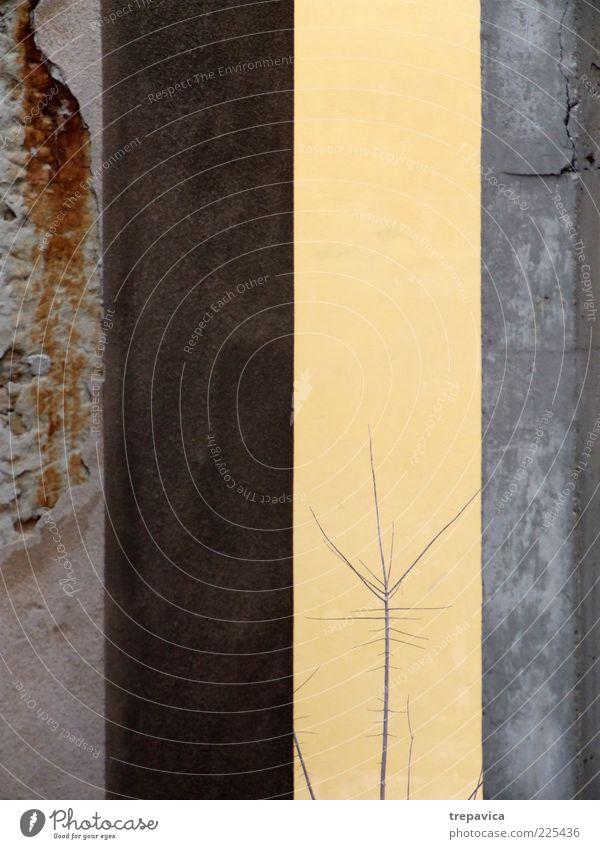 Natur Stadt Pflanze Baum Landschaft Haus Ferne gelb kalt Umwelt Wand Traurigkeit Mauer Architektur Gebäude grau