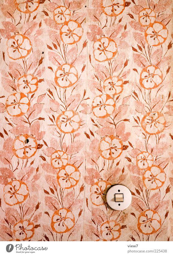 Mädchen alt rot rosa dreckig Innenarchitektur retro rund Vergänglichkeit Tapete Originalität Abnutzung Lichtschalter tapezieren Tapetenmuster