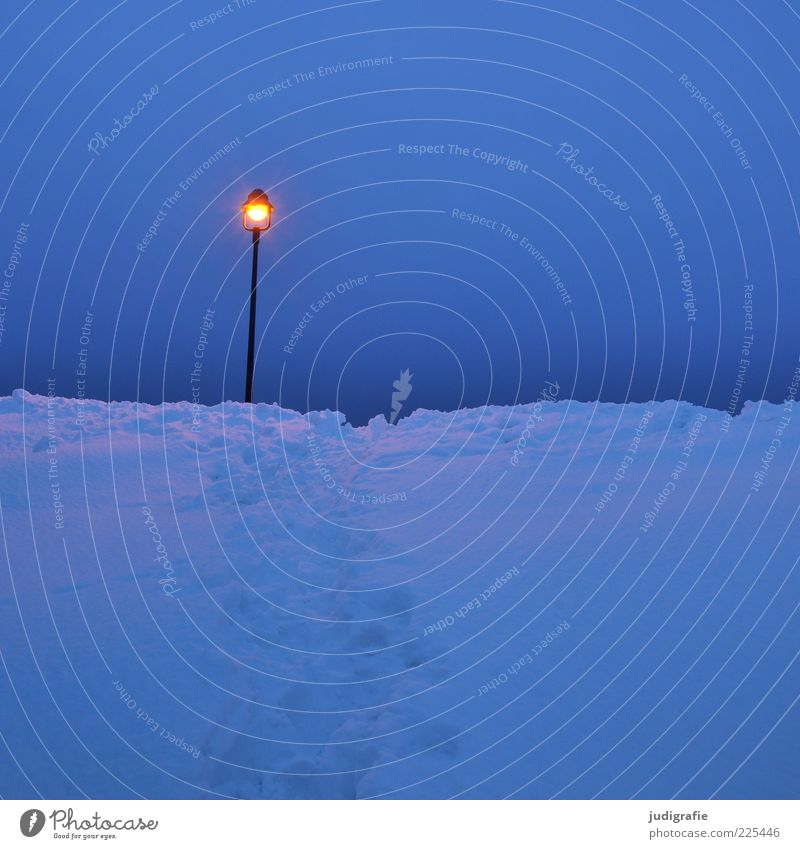 Silvestermorgen Himmel blau Winter kalt dunkel Schnee Stimmung Lampe hell leuchten Straßenbeleuchtung Morgen Natur Morgendämmerung Schneespur