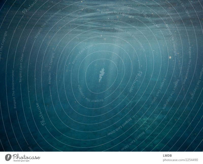 Himmlischer Schein Unterwasser II Wasser Meer Religion & Glaube Gefühle Wellen Erfolg Klima Urelemente himmlisch Begeisterung Optimismus trüb Lichtpunkt