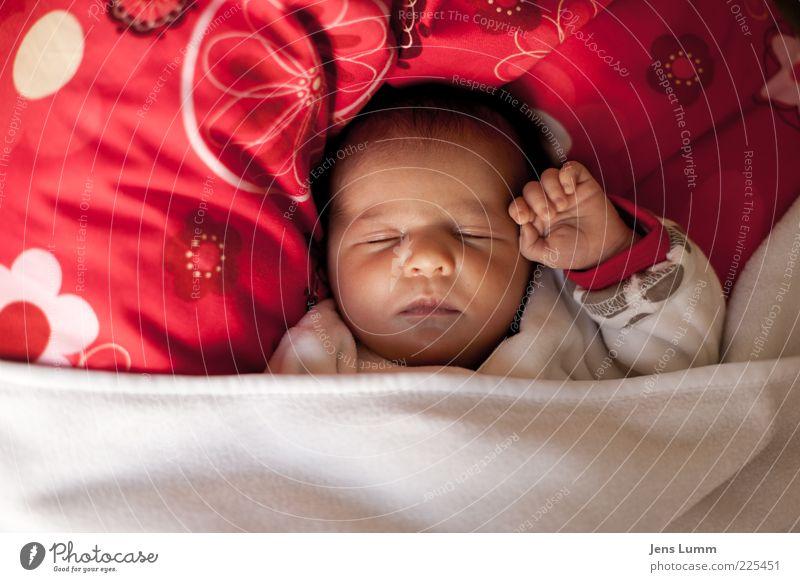 """""""Friendship!"""" Mensch Baby 1 0-12 Monate schlafen niedlich schön rot weiß Vorsicht Gelassenheit ruhig Schutz Hand Gruß Kissen Decke Geborgenheit friedlich"""