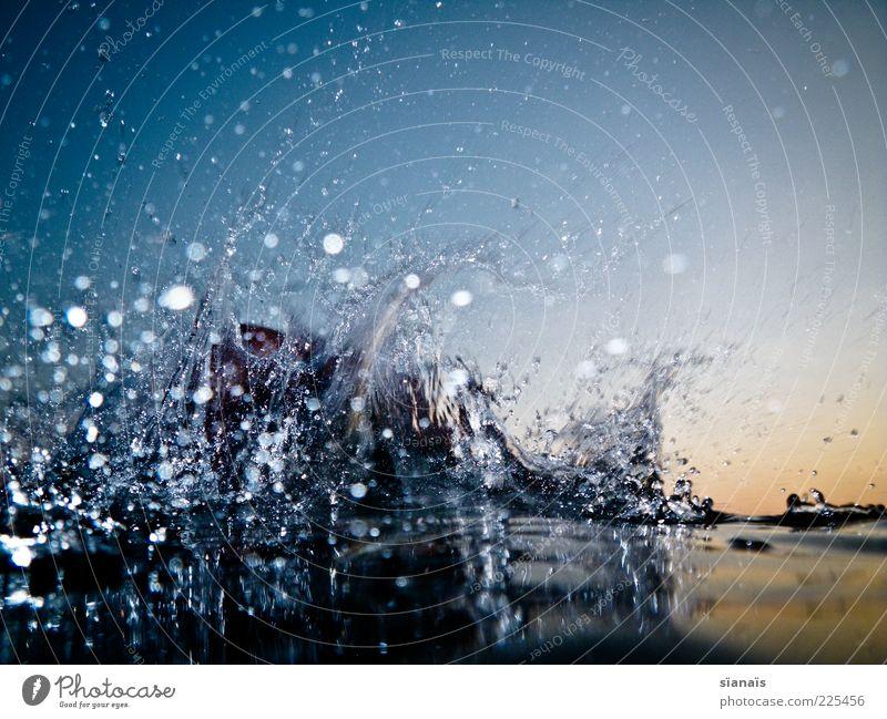 liquiditätsprüfung Sommer Urelemente Wasser Wassertropfen Wolkenloser Himmel Bewegung nass wild Wasseroberfläche Dynamik liquide Farbfoto mehrfarbig