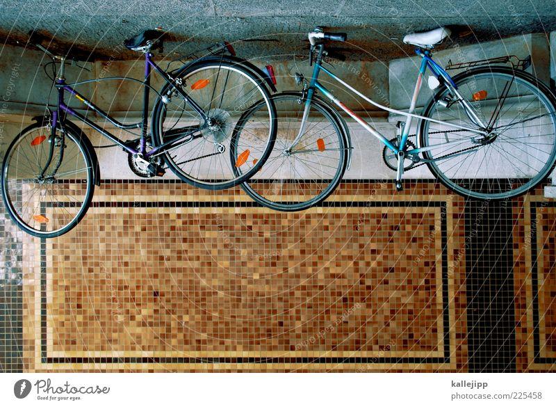 fahrradhimmel Fahrrad Verkehrsmittel Straße Wege & Pfade stehen Abstellplatz Reparatur Mosaik Farbfoto mehrfarbig Außenaufnahme Menschenleer Licht Schatten