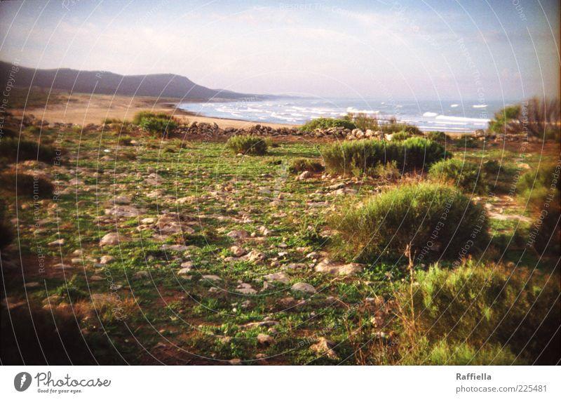 ich lehne die realität ab. Natur Sand Luft Wasser Himmel Wolken Sonne Pflanze Gras Sträucher Hügel Felsen Wellen leuchten blau grün Marokko Meer Beleuchtung