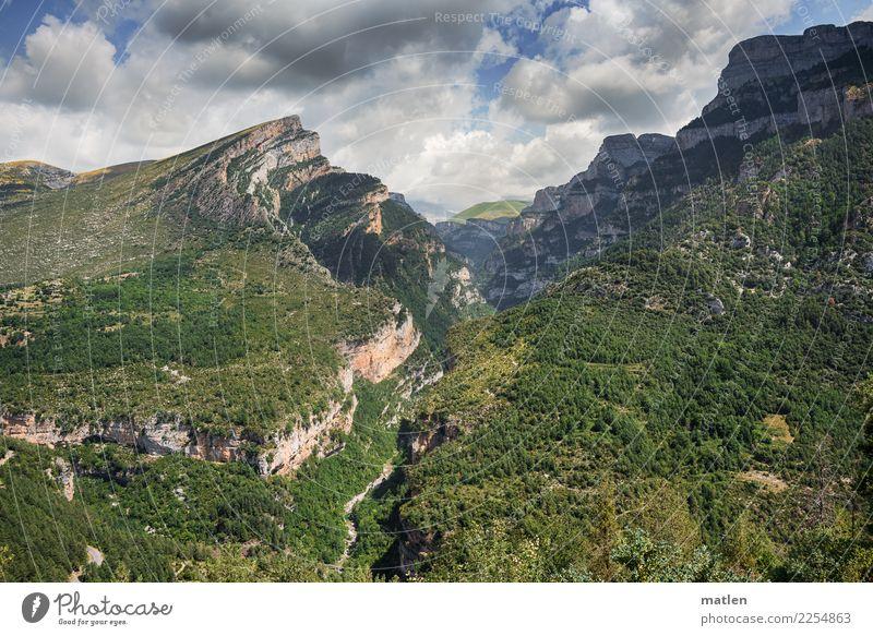 Cañón de Añisclo Himmel Natur Pflanze blau Sommer grün weiß Landschaft Baum Wolken Wald Berge u. Gebirge Gras grau braun rosa
