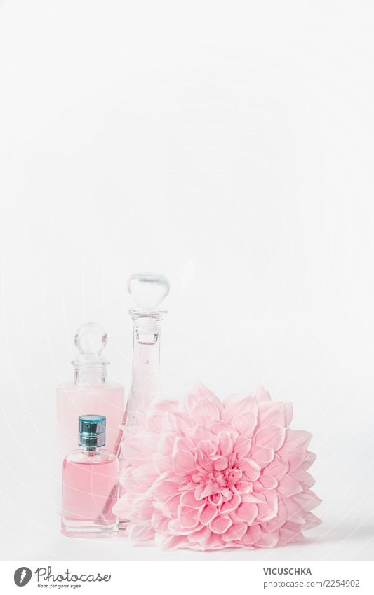 Kosmetik Flaschen mit pastell rosa Blume kaufen elegant Stil Design schön Parfum Gesundheit Wellness Spa Rose Mode trendy Hintergrundbild Entwurf Pastellton