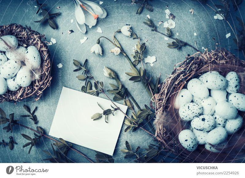 Osren Grußkarte mock up mit Nest und Eier Natur blau weiß Blume Freude Blüte Hintergrundbild Frühling Stil Feste & Feiern Stimmung Design retro