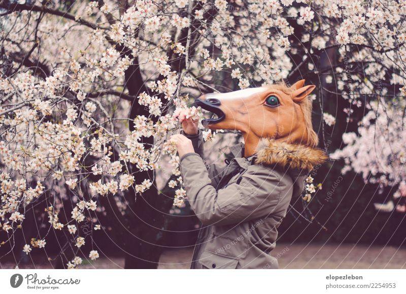 Mensch Natur Baum Blume Tier Freude Erwachsene Essen Frühling Freiheit Kopf Wellness lecker Pferd Bioprodukte Jacke