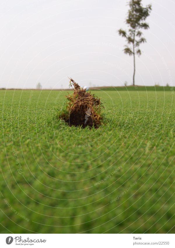 Pitchmarke Erde Rasen Golf Loch