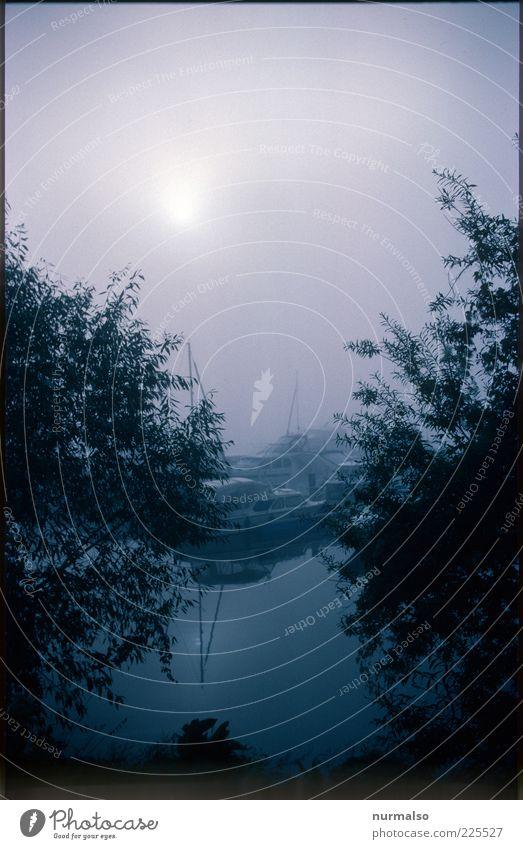 Klabautermannwetter Umwelt Natur Wasser Herbst schlechtes Wetter Nebel Seeufer Flussufer Havel Schifffahrt Sportboot Jacht Motorboot Segelboot