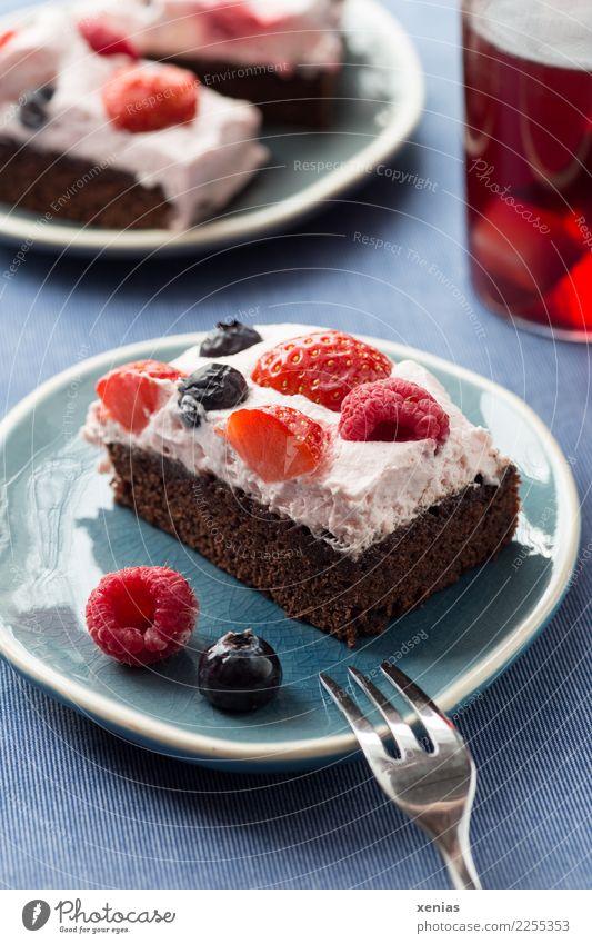 Schokokuchen mit Sahne und Beeren auf blauem Teller und rotem Tee Kuchen Teigwaren Backwaren Schokolade Brownie Schokoladenkuchen Himbeeren Erdbeeren Blaubeeren