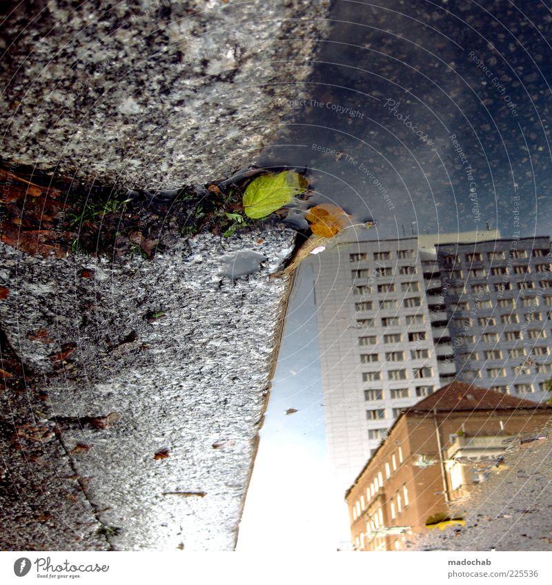 downtown Stadt Blatt Haus kalt Herbst träumen Wetter Zufriedenheit nass Hochhaus ästhetisch Klima Lifestyle Häusliches Leben Kultur Verfall