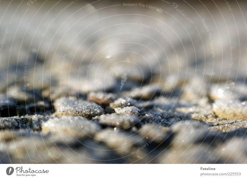 frostiges Pflaster Umwelt Winter Eis Frost kalt natürlich Stein Farbfoto Außenaufnahme Menschenleer Textfreiraum oben Morgen Tag Licht Lichterscheinung