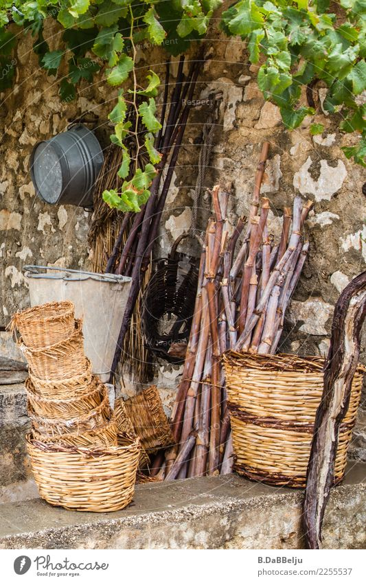 Stillleben der geflochtenen Körbe und im Hintergrund lauert die Blech-Konkurrenz. Die Holzstangen sind dabei nur Staffage und fügen sich in ihr Schicksal aber sie bekommen Hilfe vom wilden Wein.