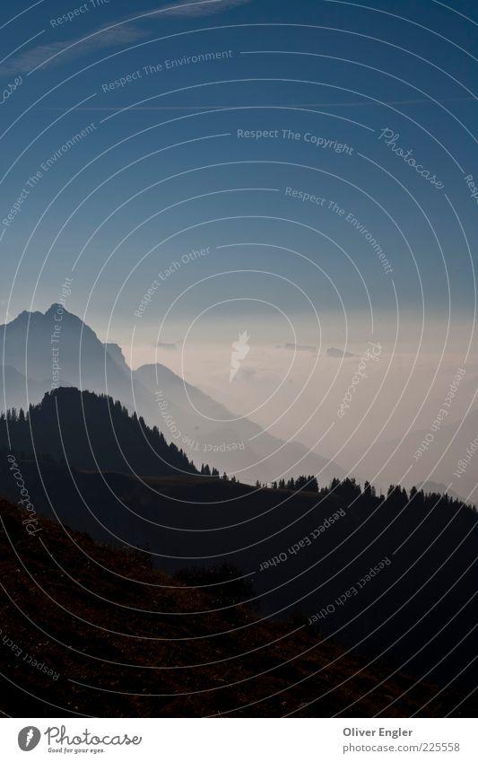 Berge im Saanen Natur Landschaft Luft Himmel Wolken Sonnenlicht Wetter Schönes Wetter Unwetter Nebel Schnee Alpen Berge u. Gebirge Gipfel Stein hell blau weiß