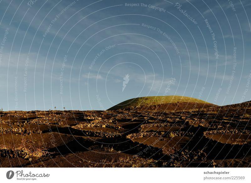 Lanzarote - La Geria Natur blau Ferien & Urlaub & Reisen Berge u. Gebirge Erde Insel Tourismus Boden Abenddämmerung Vulkan Kanaren Weinbau vertiefen