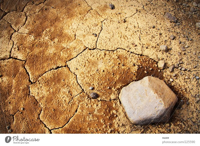 Extra dry Natur Umwelt Sand Stein braun Erde Klima Wüste trocken Riss Dürre Klimawandel nachhaltig karg Ocker