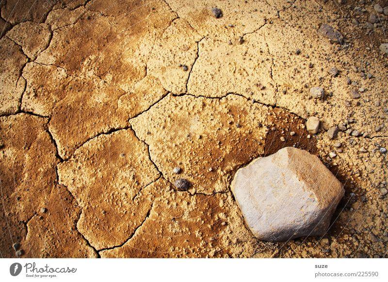 Extra dry Natur Umwelt Sand Stein braun Erde Klima Wüste trocken Riss Dürre Klimawandel nachhaltig karg Ocker