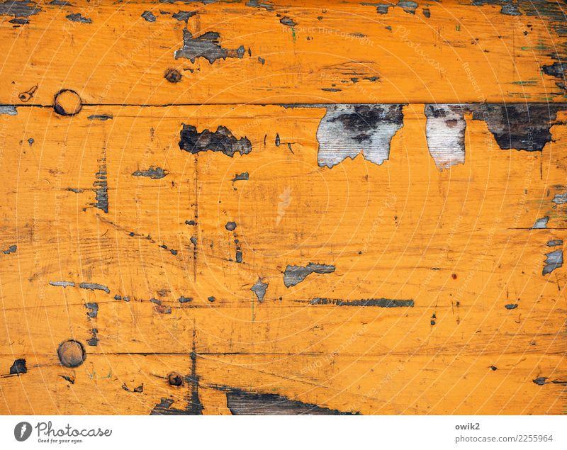 Jenseits des Mainstream | Orangerie alt Farbstoff Hintergrundbild orange Vergänglichkeit Bank nah Spuren Verfall Zerstörung abblättern Abnutzung Kratzer