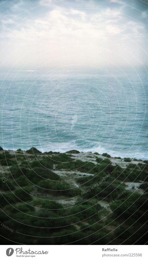 überleben und gefühle haben Natur Wasser blau Pflanze Meer Wolken ruhig Ferne Landschaft Gras grau Sand Küste Wellen frisch Sträucher