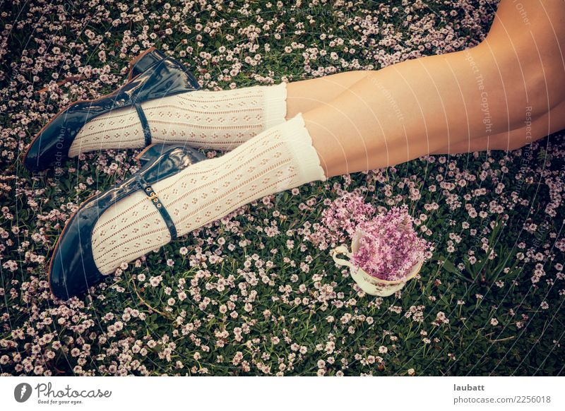 Frühling mit Fliedern Jugendliche Junge Frau schön Erholung Freude Leben Beine Lifestyle Stil Garten Fuß Mode Freizeit & Hobby Zufriedenheit elegant Idylle