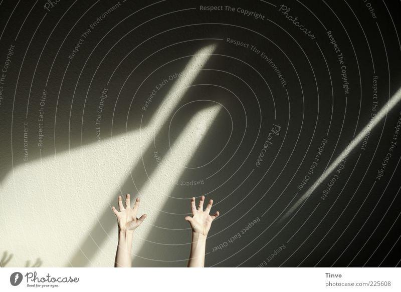 2 Arme in die Höhe gestreckt Hand Wand lustig Finger einfach außergewöhnlich skurril Entsetzen Schrecken Aufregung ausgestreckt Anspannung erschrecken Mensch