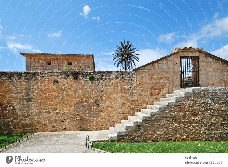 Sicher ist sicher Himmel Sommer Schönes Wetter Baum Palme Haus Gebäude Mauer Wand Treppe Tür alt ästhetisch blau braun grün Sicherheit Schutz mediterran Rasen