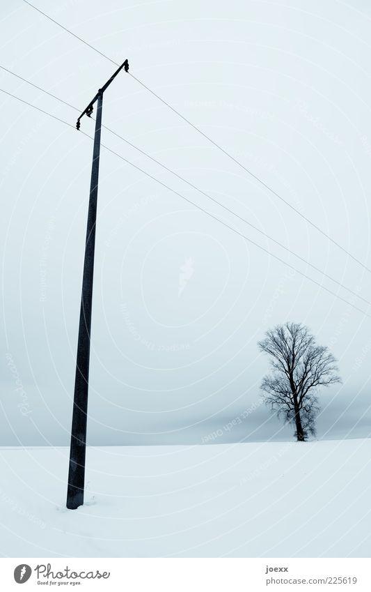 Ein T Com selten allein. Himmel Natur weiß blau Baum Winter ruhig Schnee Landschaft hoch Strommast Telefonmast