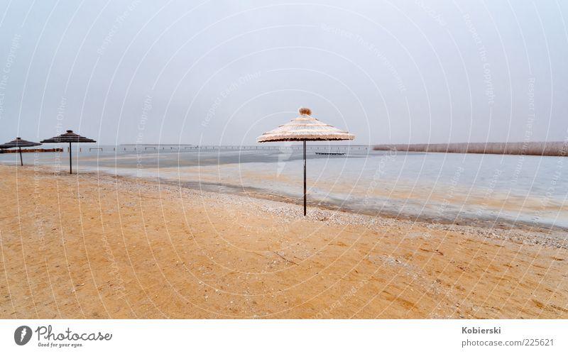 Wann wird's mal wieder richtig Sommer Natur Wasser blau ruhig Einsamkeit Sand See braun Horizont Gelassenheit Sonnenschirm Seeufer Sandstrand