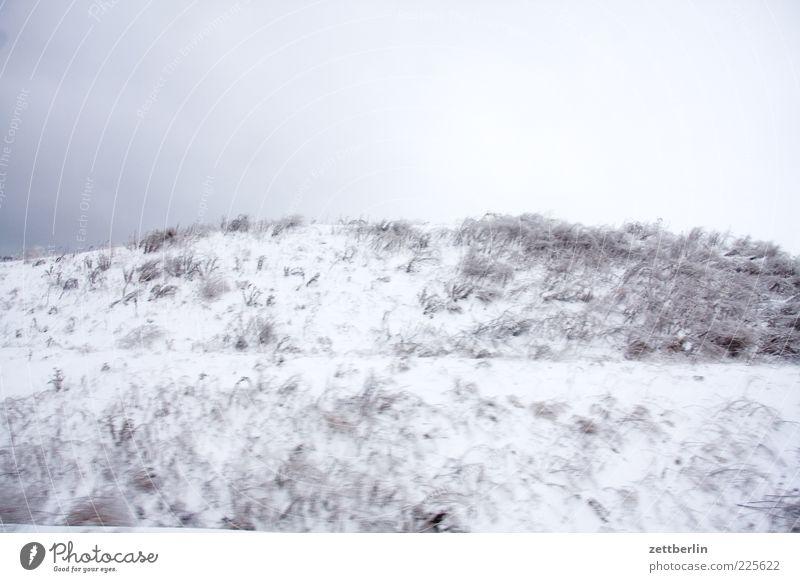 Schnee Ferien & Urlaub & Reisen Ausflug Umwelt Natur Landschaft Himmel Winter Klimawandel Wetter Eis Frost Wiese Hügel Gras Grasland Schneelandschaft Farbfoto