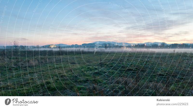 Nebel am Abend grün blau Wolken ruhig Wiese Herbst Gras Küste Stimmung