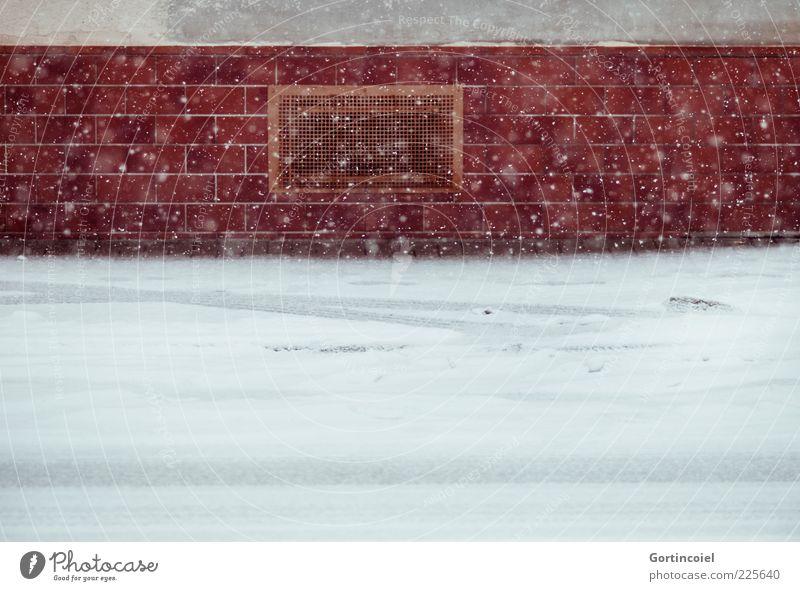 Schneegestöber Winter Schneefall Haus Straße kalt Schneeflocke Winterstimmung Farbfoto Außenaufnahme Schwache Tiefenschärfe Mauer Wand Reflexion & Spiegelung