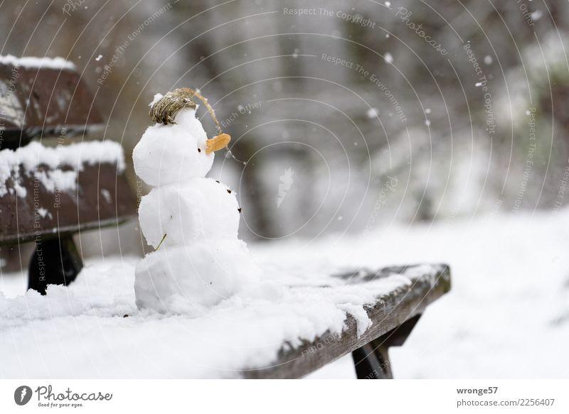 Winterbaustelle Freizeit & Hobby kalt klein braun weiß Schneefall Schneemann Parkbank Farbfoto Gedeckte Farben Außenaufnahme Nahaufnahme Menschenleer